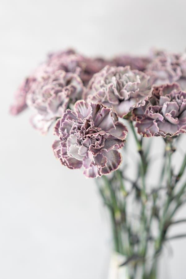 Uroczy kwiaty w szklanej wazie Piękny bukiet goździk jest niezwykłym kolorem Kwiecisty skład, światło dzienne Lato fotografia stock