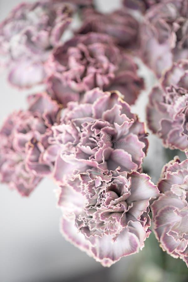 Uroczy kwiaty w szklanej wazie Piękny bukiet goździk jest niezwykłym kolorem Kwiecisty skład, światło dzienne Lato zdjęcie stock