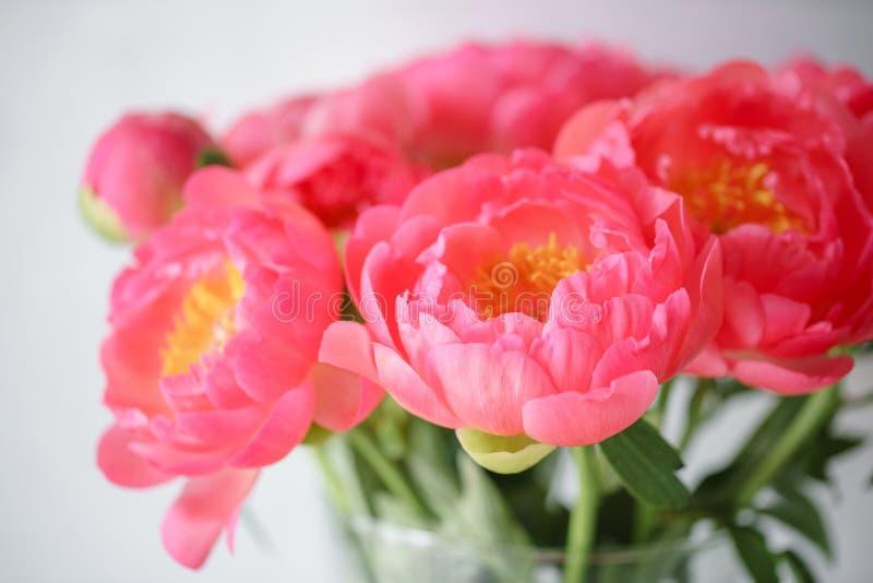 Uroczy kwiaty w szklanej wazie Piękny bukiet peonia koralowy urok poniekąd Kwiecisty skład, światło dzienne wally obrazy royalty free