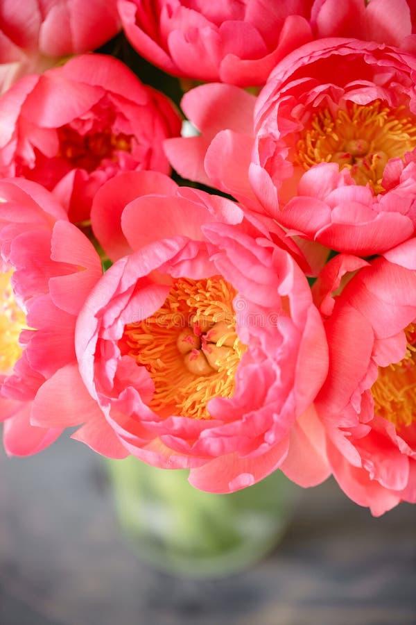 Uroczy kwiaty w szklanej wazie Piękny bukiet peonia koralowy urok poniekąd Kwiecisty skład, scena, światło dzienne wally fotografia stock