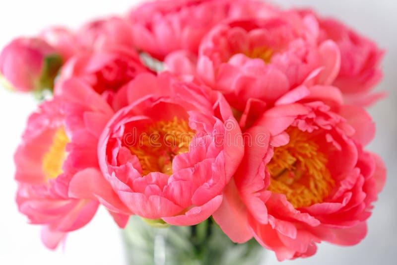Uroczy kwiaty w szklanej wazie Piękny bukiet peonia koralowy urok poniekąd Kwiecisty skład, scena, światło dzienne wally zdjęcia royalty free