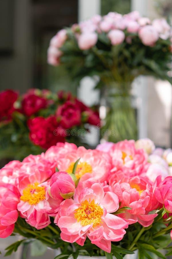 Uroczy kwiaty w szklanej wazie Piękny bukiet peonia koralowy urok poniekąd Kwiecisty skład, scena, światło dzienne wally zdjęcie royalty free