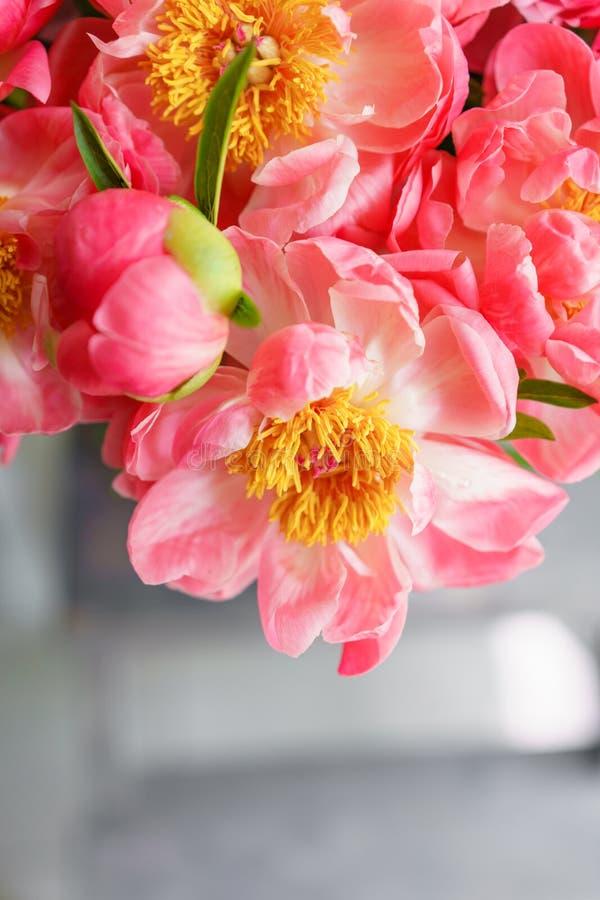 Uroczy kwiaty w szklanej wazie Piękny bukiet peonia koralowy urok poniekąd Kwiecisty skład, scena, światło dzienne wally Ve obraz stock