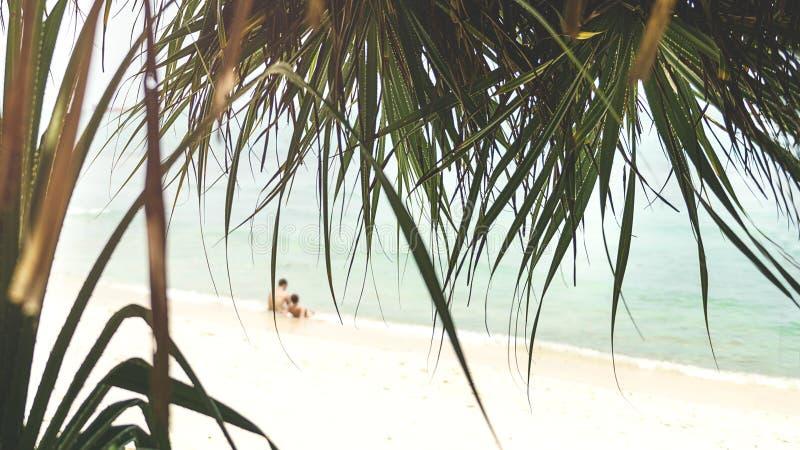 Uroczy pary obsiadanie na plaży fotografia stock