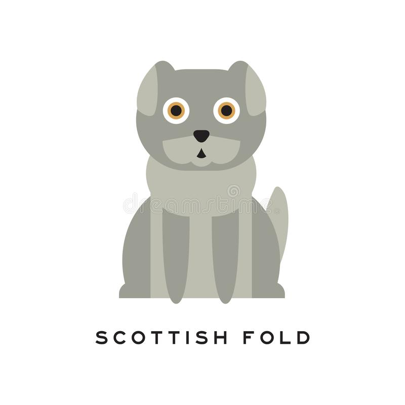 Uroczy Szkocki fałdu kot Kłapoucha figlarka z szarość zwiera futerkowych i dużych brązów oczy Kreskówki purebred zwierze domowy ilustracji