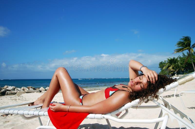 uroczysty kajmanu sunbath zdjęcia stock