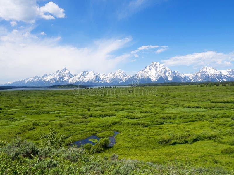 Uroczysty Teton park narodowy jest Stany Zjednoczone parkiem narodowym lokalizować w północno-zachodni Wyoming, U S zdjęcia stock