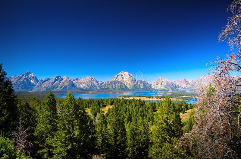 Uroczysty Teton pasmo górskie, Jackson jezioro, Uroczysty Teton park narodowy, usa obraz royalty free