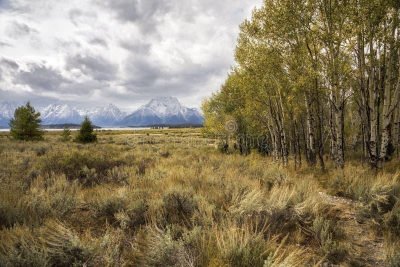 Uroczysty Teton w zimie fotografia royalty free