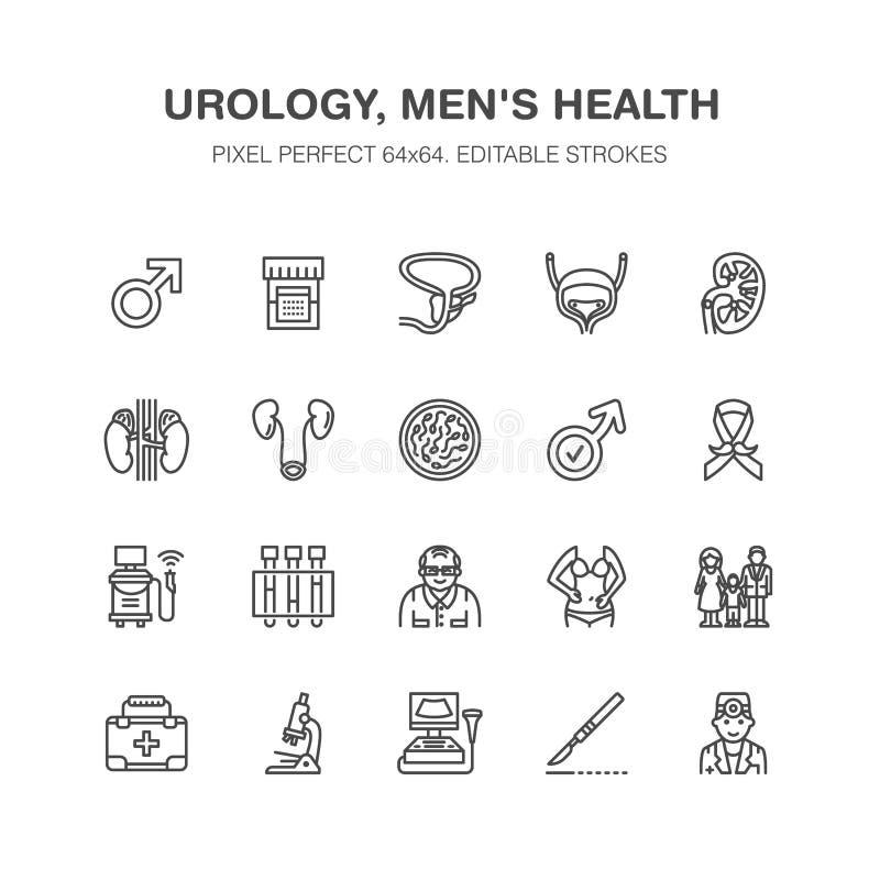 Urology διανυσματικά επίπεδα εικονίδια γραμμών Urologist, κύστη, νεφρά, επινεφρίδιοι αδένες, προστάτης Γραμμικά ιατρικά εικονογρά διανυσματική απεικόνιση