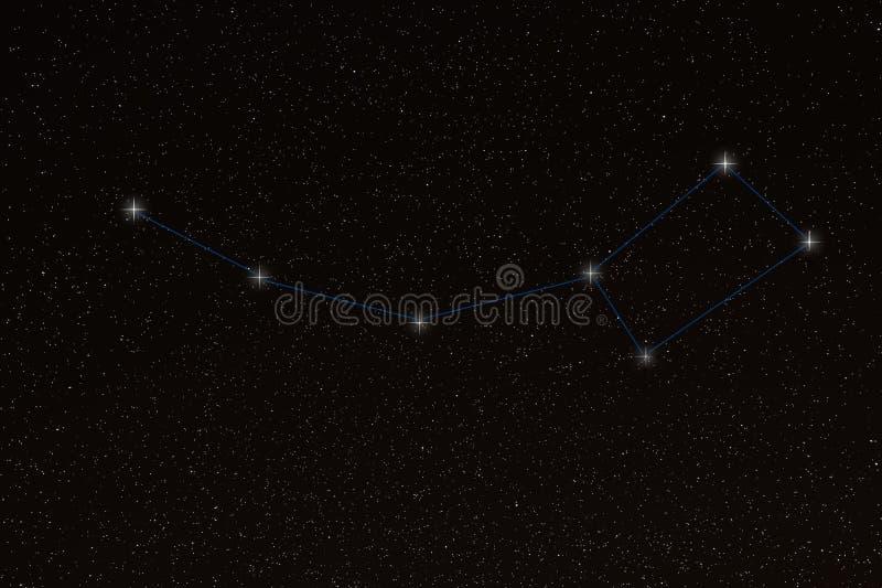 Ursa Minor, peu de constellation de Dipper, peu d'ours photos libres de droits