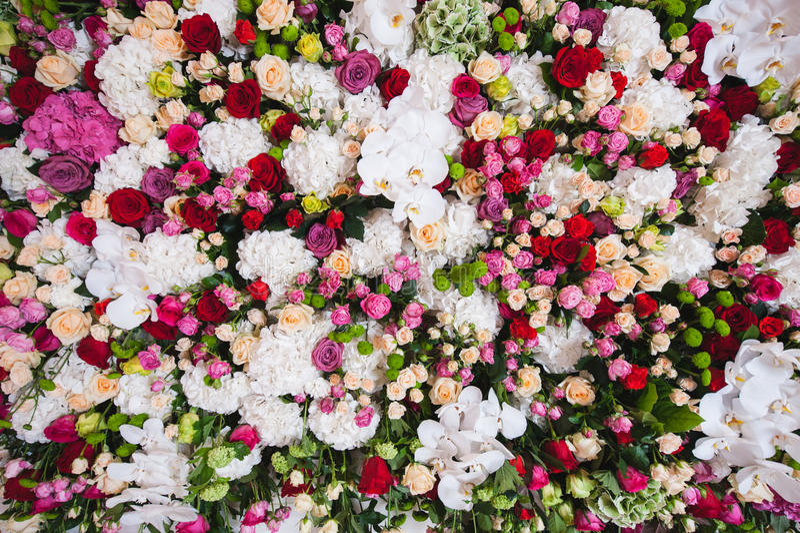 Ursnygg blom- sammansättning av orkidérna och rosorna i vit, rosa färg färgar royaltyfria bilder