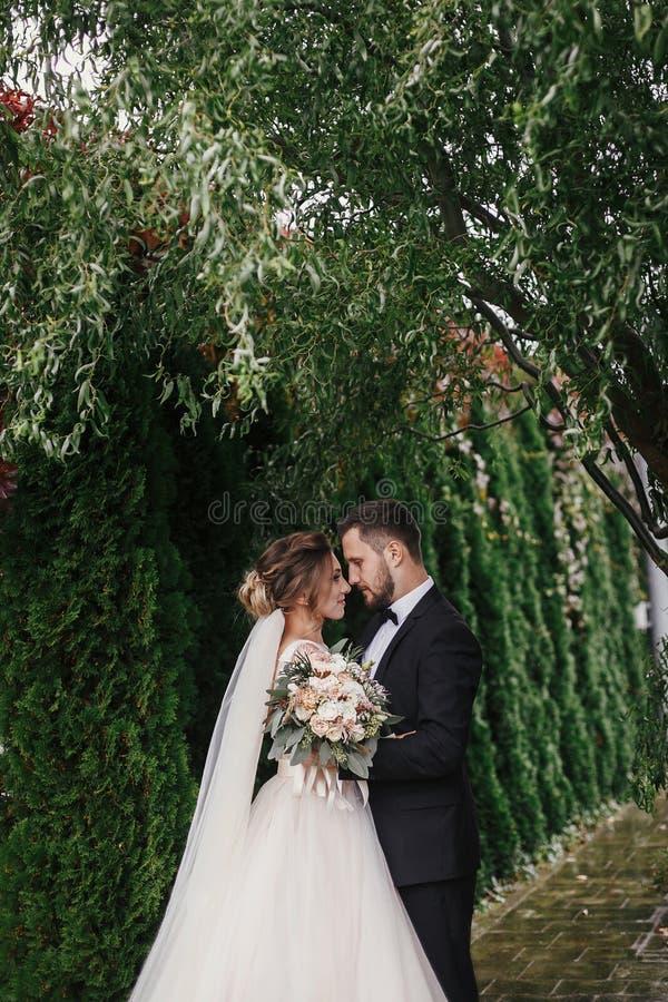 Ursnygg brud och stilfull brudgum som kramar försiktigt på bakgrund av royaltyfri fotografi