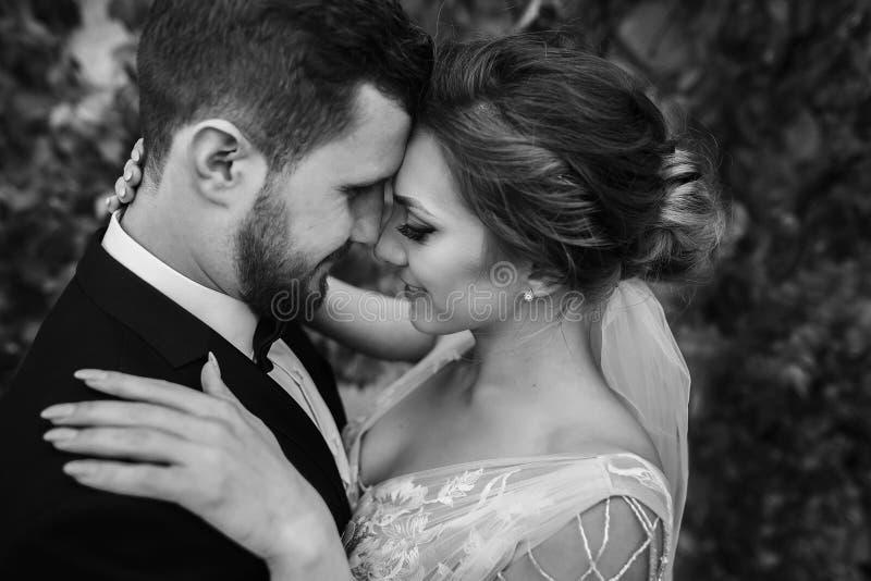 Ursnygg brud och stilfull brudgum som kramar och kysser försiktigt outd royaltyfri fotografi