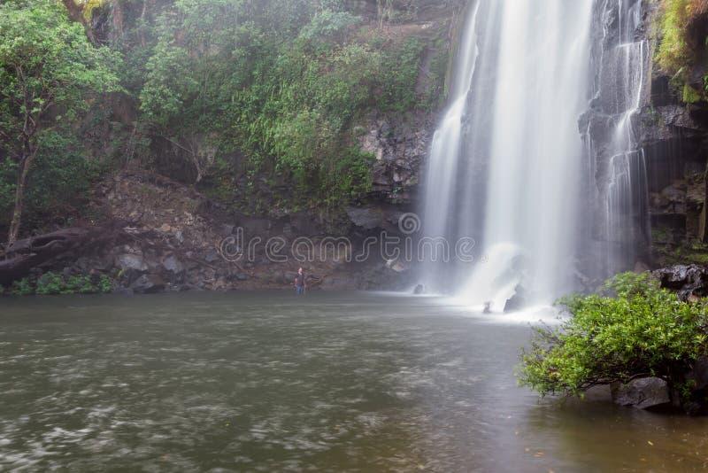 Ursnygg vattenfall i Costa Rica royaltyfri bild