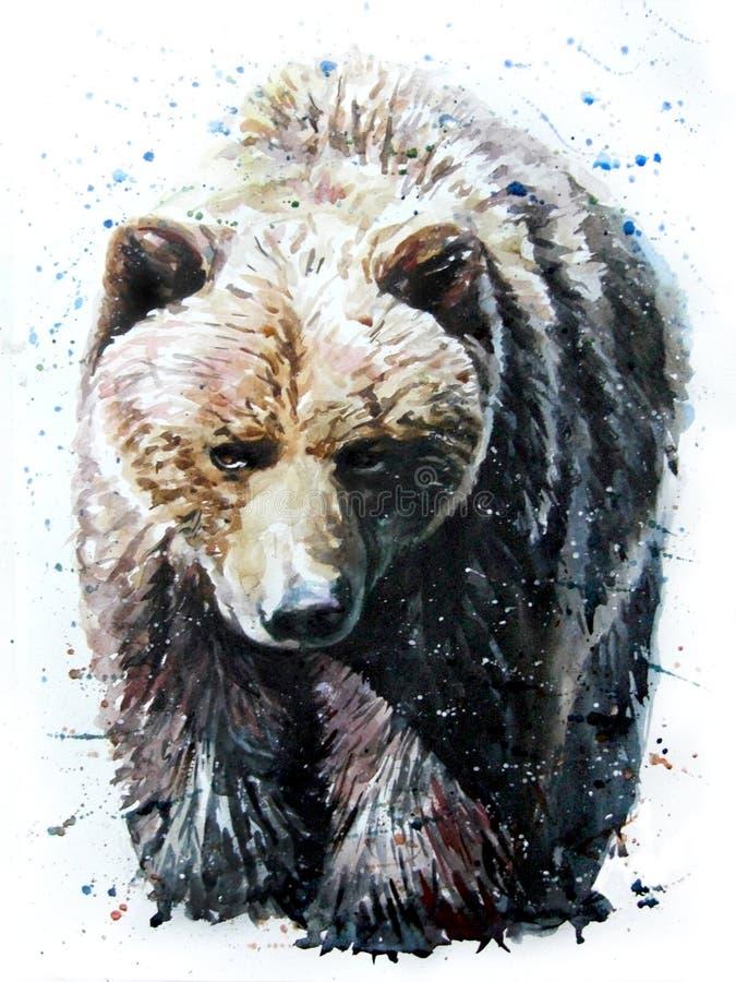 Urso ilustração royalty free