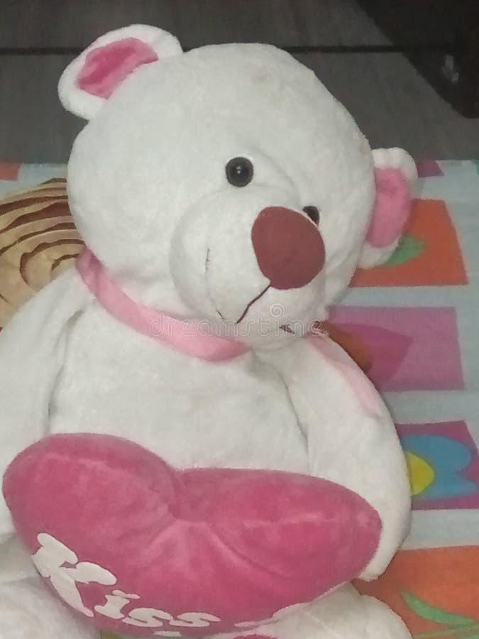 Urso bonito da peluche fotos de stock royalty free