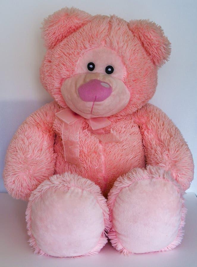 Urso cor-de-rosa brinquedo macio Na imagem de fundo branca fotografia de stock