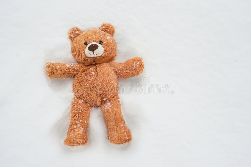 Urso da hera que encontra-se na neve fotografia de stock