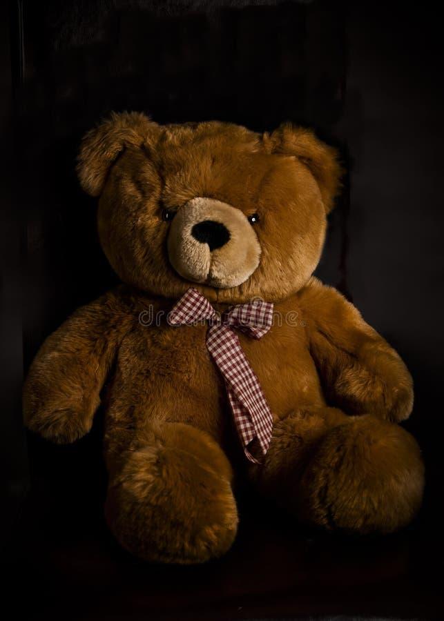 Urso da peluche de Brown imagens de stock