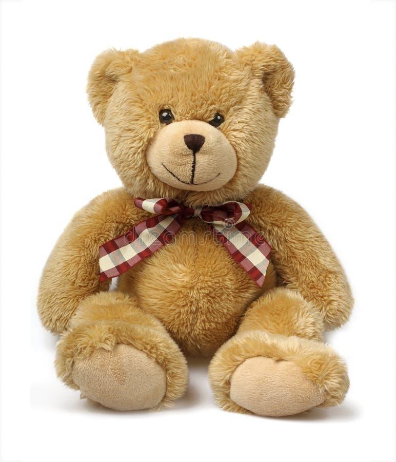 Urso da peluche isolado no branco foto de stock royalty free