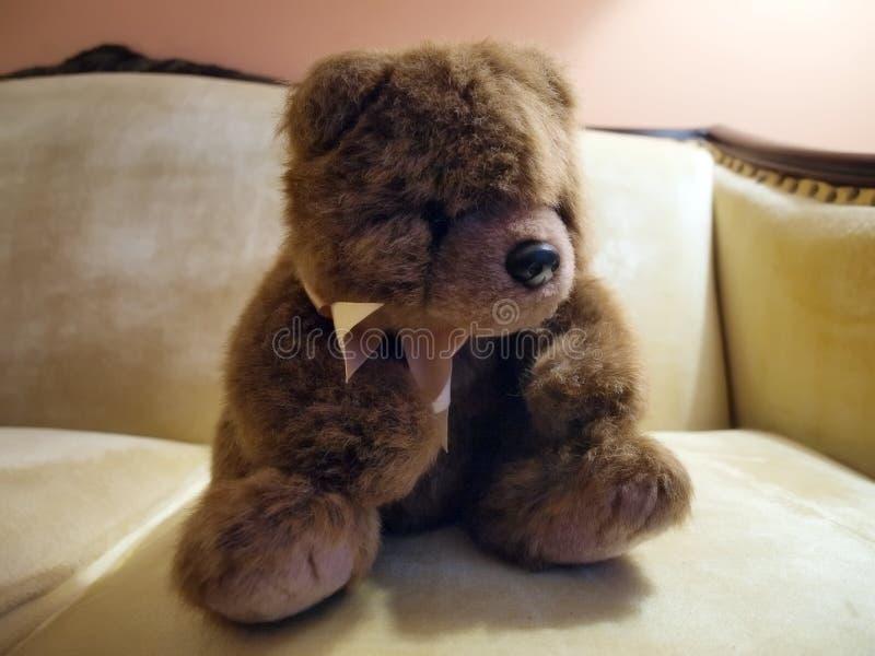 Urso da peluche no sofá foto de stock