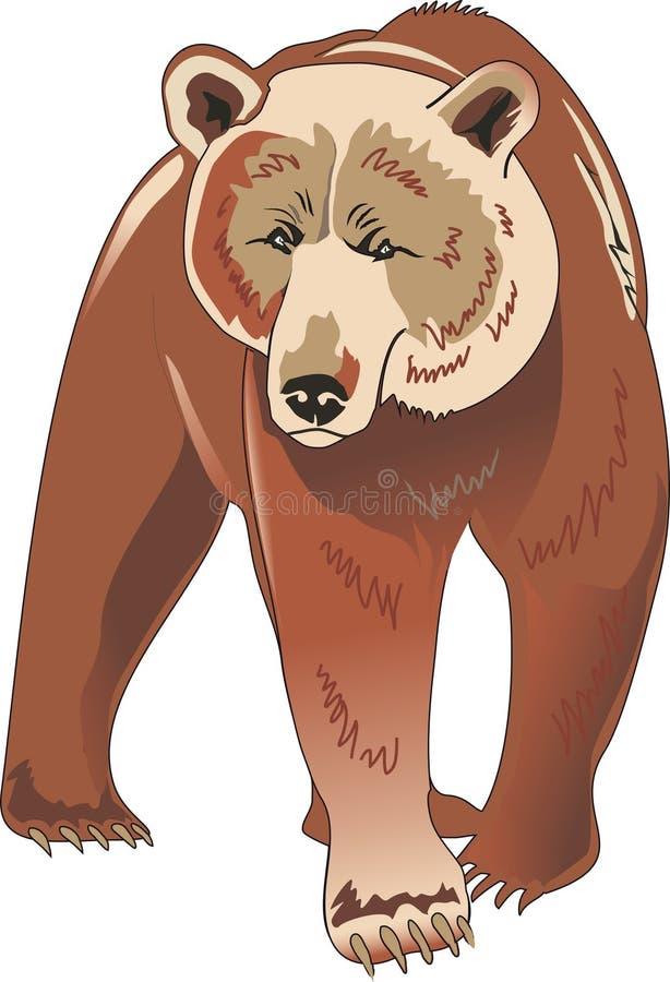 Urso de Brown ilustração stock