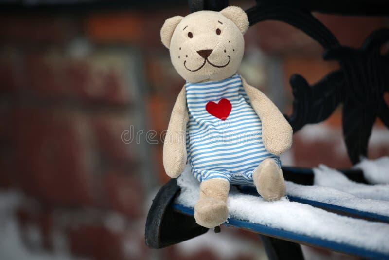 Urso de lãs do banco do inverno fotografia de stock