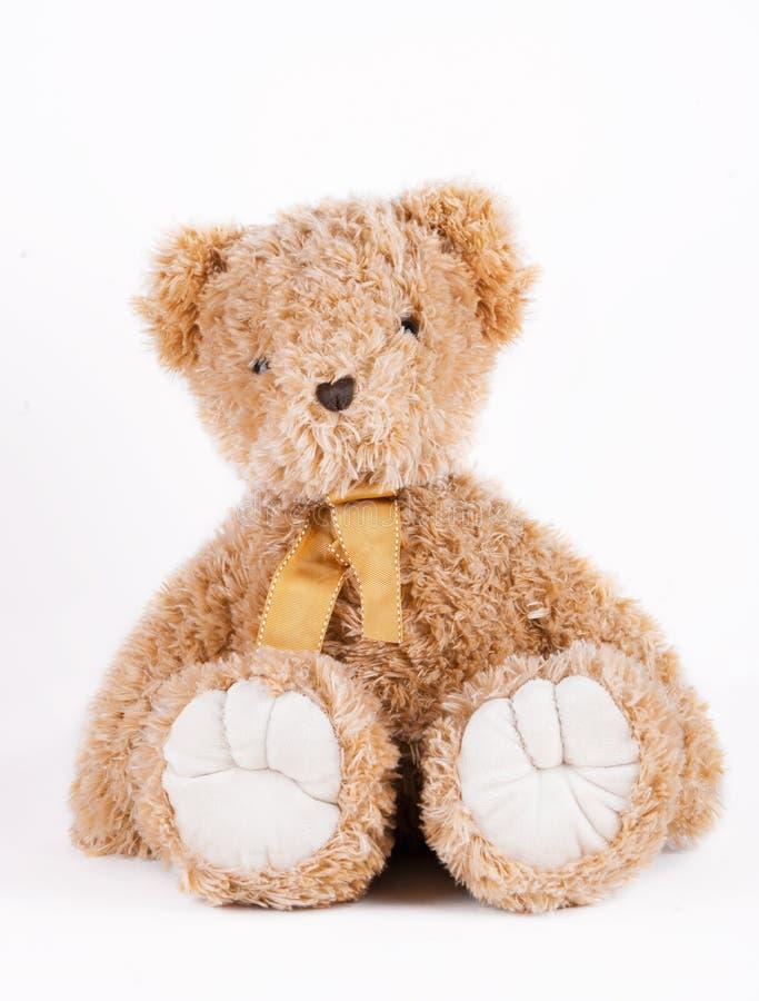 Urso de peluche clássico no fundo branco imagens de stock