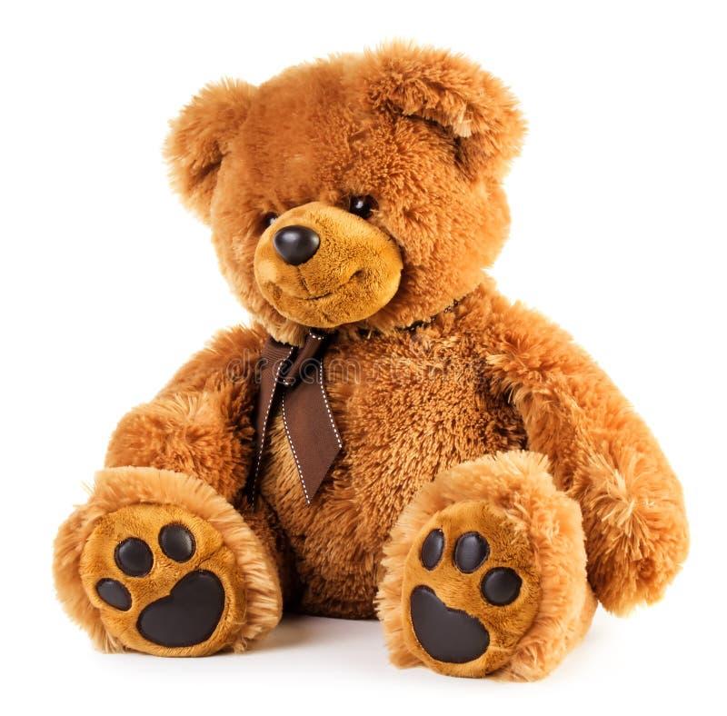 Urso de peluche do brinquedo foto de stock royalty free