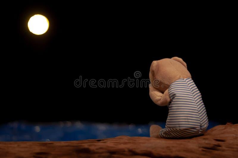 Urso de peluche que grita e que senta apenas enfrentar ao mar e à lua azuis foto de stock royalty free