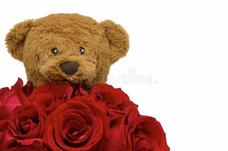Urso de peluche que guarda o ramalhete de rosas vermelhas para o dia de Valentine's fotos de stock