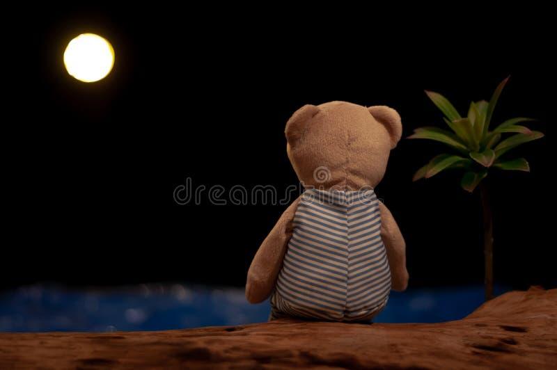 Urso de peluche que senta-se apenas olhando a lua e o mar imagens de stock