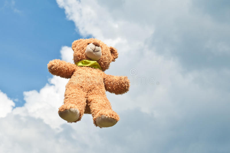 Urso de voo fotos de stock
