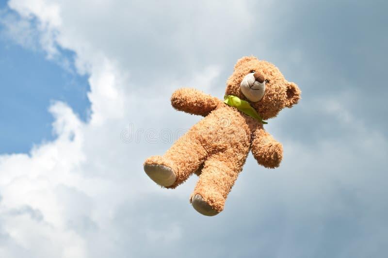 Urso de voo fotos de stock royalty free