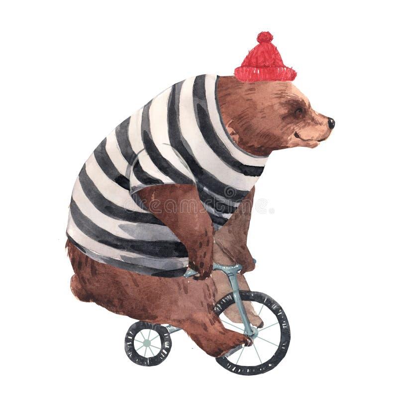 Urso do circo da aquarela ilustração stock