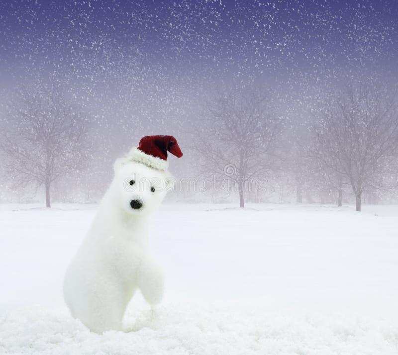 Urso do Natal no campo nevado imagem de stock royalty free