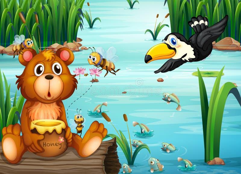 Urso e pelicano ilustração stock