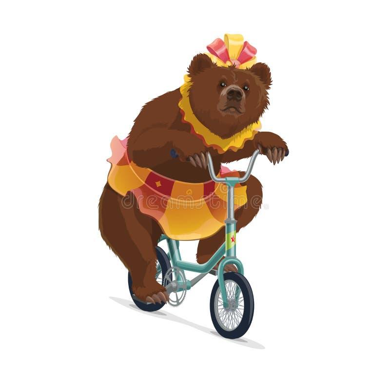 Urso isolado do circo na equitação da saia na bicicleta ilustração stock