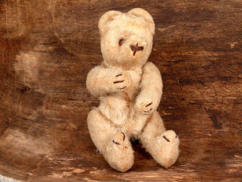 Urso muito velho imagens de stock
