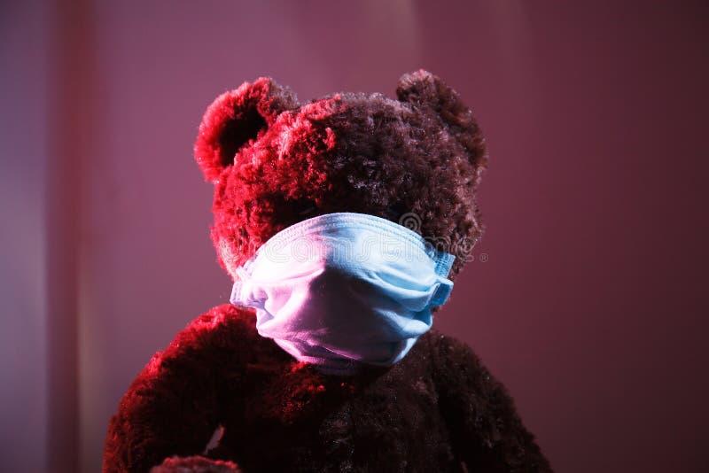 Urso na máscara médica fotos de stock