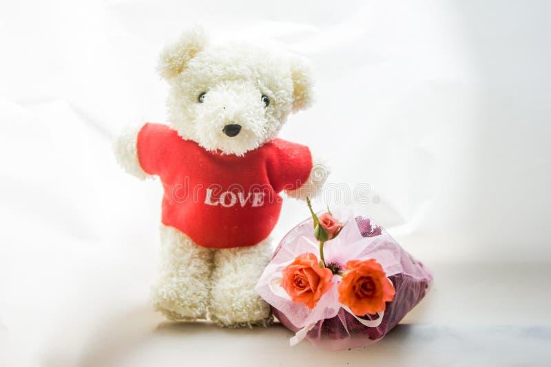 Urso no amor fotos de stock