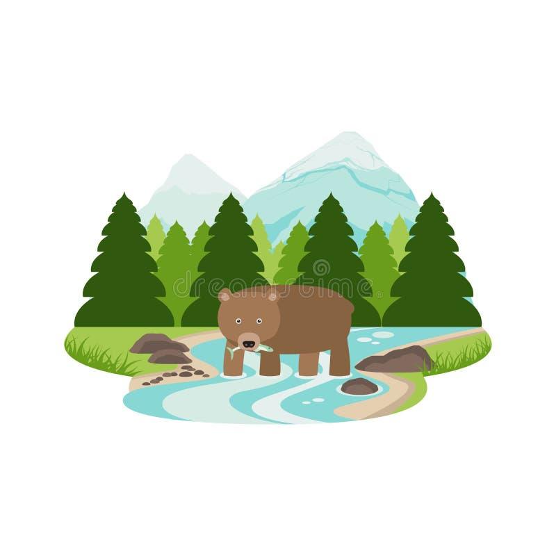 Urso pardo no vetor da paisagem da floresta e da montanha do pinho do rio ilustração royalty free