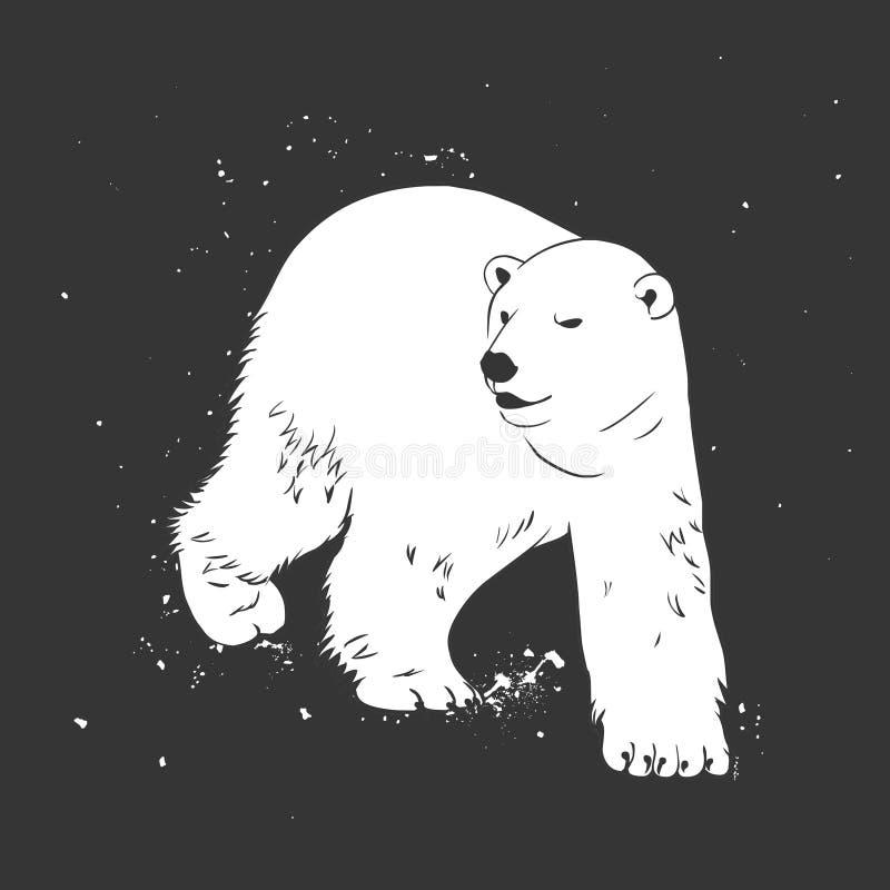 Urso polar branco ilustração do vetor