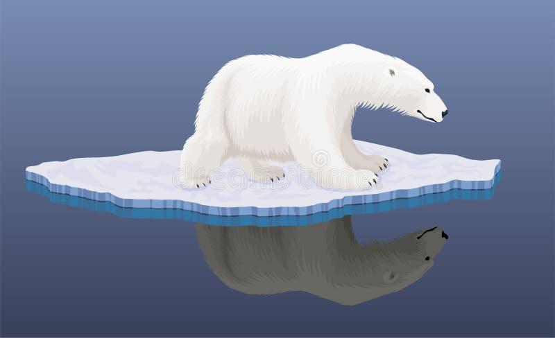 Urso polar do vetor em uma banquisa de gelo na Antártica - catástrofe das alterações climáticas ilustração do vetor