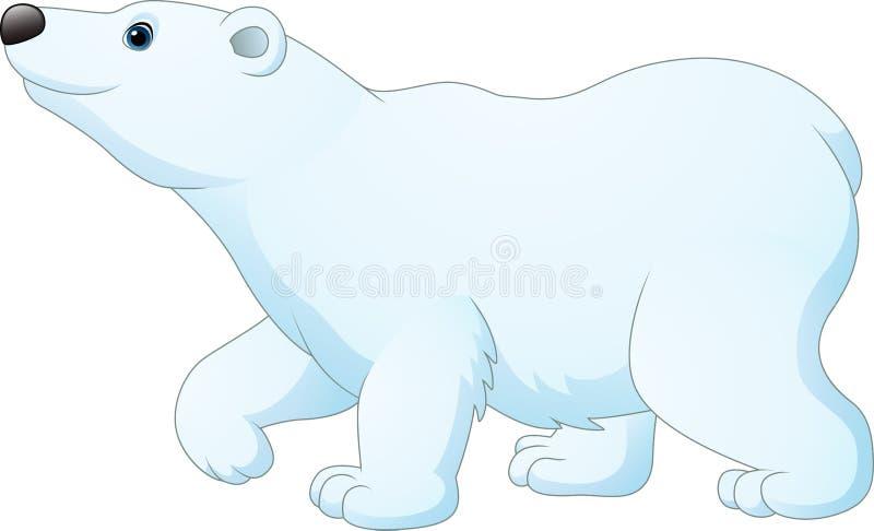 Urso polar dos desenhos animados isolado no fundo branco ilustração do vetor