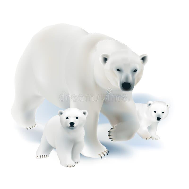 Urso polar e filhotes ilustração stock
