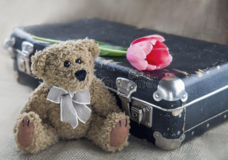 Urso velho da peluche imagens de stock royalty free