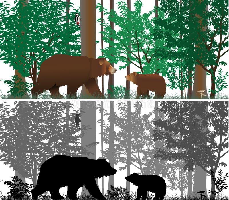 ursos ilustração royalty free