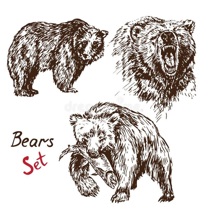 Ursos ajustados: lixando, rosnadura, caçando salmões, com inscrição ilustração do vetor